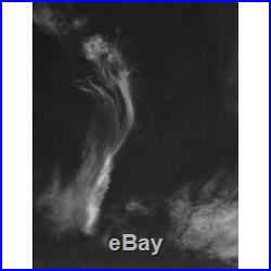 Edward Weston Cloud (Printed 1960's, USA) Vintage Photography Art COA