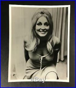 Original Rare Sharon Tate 1960's Model Glamour Promo Press Photo Movie Star VTG