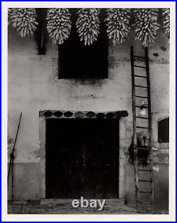 Paul Strand, gelatin silver press print, Farm in the Ain, France 1950