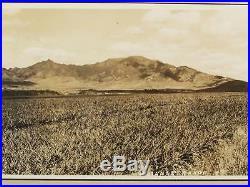 Vintage 1940s Hawaii Wainae Range Panoramic Photograph Pineapple Fields Oahu